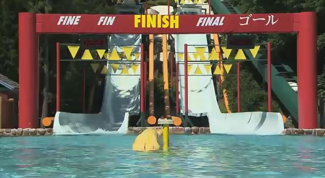 blizzard beach at disney world water parks racing slides finish line