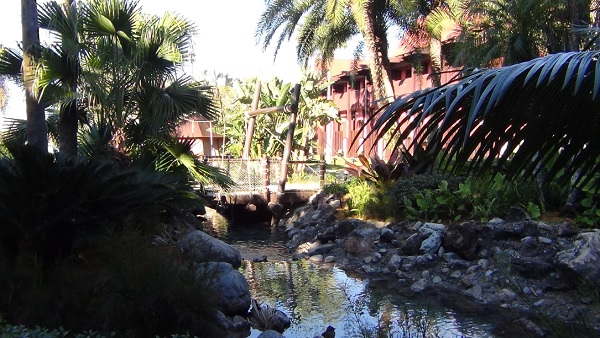 polynesian disney world lush gardens and creek