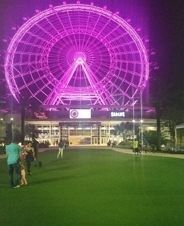 idrive-360-orlando-eye-night